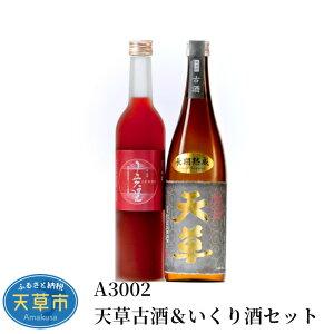 【ふるさと納税】米焼酎 いくり酒 各 720ml セット 25度 酒 天草古酒 貯蔵 ギフト アルコール 九州産 瓶