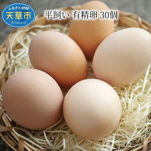 【ふるさと納税】平飼い 有精卵 30個 卵 たまご