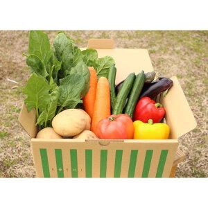 【ふるさと納税】合志の旬のお野菜セット