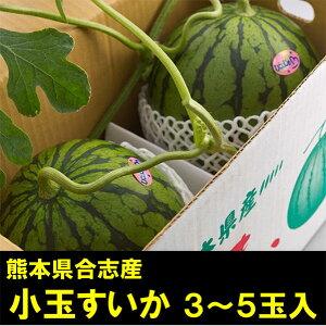 【ふるさと納税】小玉すいか3〜5玉入(品種:ひとりじめ 1玉約2〜3kg)