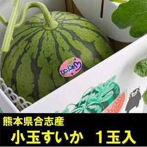【ふるさと納税】小玉すいか1玉入(品種:ひとりじめ 1玉約3kg)