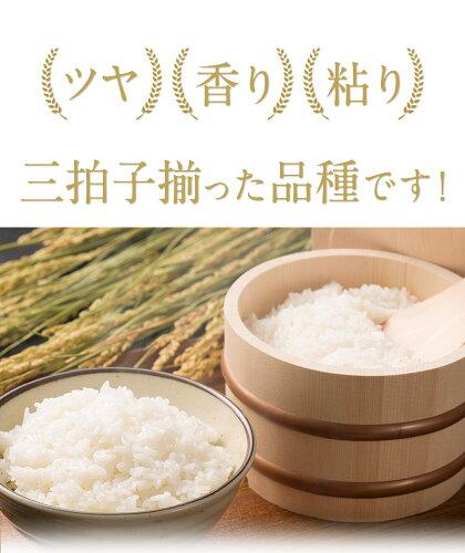 【ふるさと納税】令和2年産ひのひかり10kg熊本県産白米10kg+国産雑穀米令和2年精米玉東町《出荷時期をお選びください》