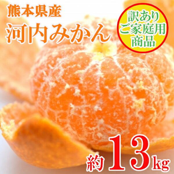 【ふるさと納税】訳あり 熊本県産 河内みかん(約13kg)