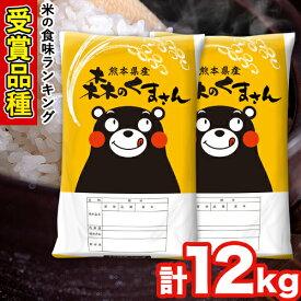 【ふるさと納税】森のくまさん 12kg 6kg×2袋 白米 令和2年産 熊本県産 単一原料米 長洲町 森くま 10000円 すぐ届く《3-7営業日以内に出荷(土日祝除く)》
