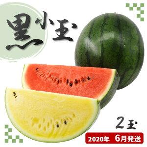 【ふるさと納税】黒小玉スイカ(黄色・赤色)熊本県和水町産【2020年6月発送】