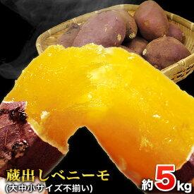 【ふるさと納税】熊本県大津町産 中瀬農園のベニーモ 約5kg(大中小サイズ不揃い)《5月中旬-6月中旬頃より順次出荷》 さつまいも 芋 紅はるか スイートポテト 干し芋にも