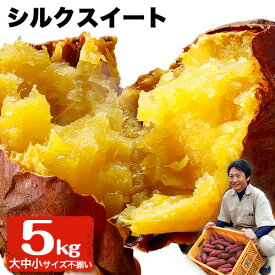 【ふるさと納税】熊本県大津町産 中無田農園のシルクスイート 約5kg(大中小サイズ不揃い)《12月上旬-12月末頃より順次出荷》 さつまいも 芋 スイートポテト 干し芋にも 特産品