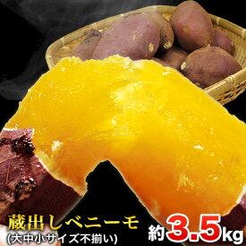 【ふるさと納税】熊本県大津町産 中瀬農園のベニーモ 約3.5kg(大中小サイズ不揃い)《11月中旬-12月中旬頃より順次出荷》