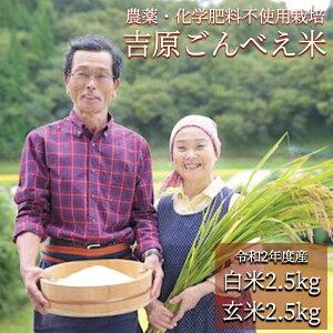 【ふるさと納税】米 白米 玄米 食べ比べ 無農薬 令和2年 ごんべえ米 5kg 熊本 南小国 送料無料