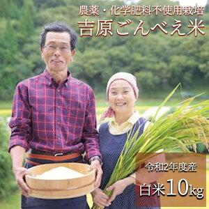 【ふるさと納税】 米 白米 玄米 無農薬 令和2年 10kg ごんべえ米 熊本 南小国 送料無料