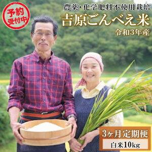 【ふるさと納税】予約受付 令和3年 ごんべえ米 定期便 10kg 3ヶ月 無農薬 農薬不使用 白米 玄米 玄米対応可能 米 コメ 熊本 阿蘇 南小国町 送料無料