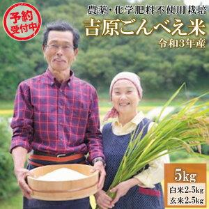 【ふるさと納税】予約受付 令和3年 ごんべえ米 5kg 無農薬 農薬不使用 白米 玄米 食べ比べ 米 コメ 熊本 阿蘇 南小国町 送料無料