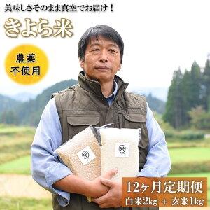 【ふるさと納税】定期便 12ヶ月 米 白米 玄米 食べ比べ 3kg 農薬不使用 無農薬 有機栽培 令和2年 真空パック きよら米 熊本 南小国町 送料無料