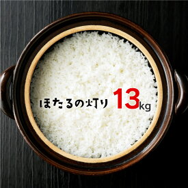 【ふるさと納税】ほたるの灯り 白米 13kg (6.5kg×2袋) 令和2年産 計10kg以上 ほたるのひかり 米 お米 精米 熊本県産 くまもと 国産 送料無料