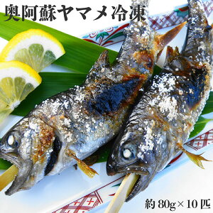 【ふるさと納税】005-101 奥阿蘇 ヤマメ 冷凍/山女魚 川魚 熊本県 人気