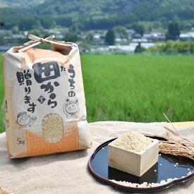【ふるさと納税】【令和元年度産新米】アイガモ栽培米「コシヒカリ」5キロ《玄米》合鴨農法 田舎のお米