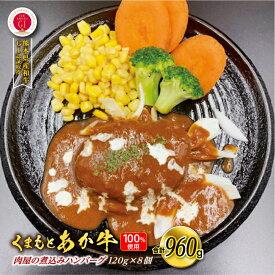 【ふるさと納税】くまもとあか牛100%使用 肉屋の煮込みハンバーグ120g×8個