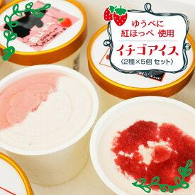 【ふるさと納税】南阿蘇村苺農園から紅ほっぺを使ったアイス2種×5(計10個セット)
