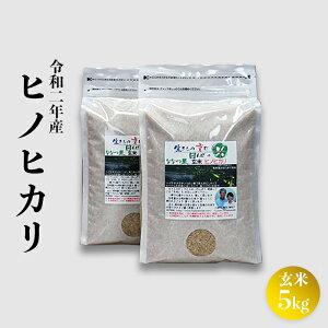 【ふるさと納税】【令和2年度産】ヒノヒカリ(ななつ星)玄米5kg生きもの育む田んぼのお米