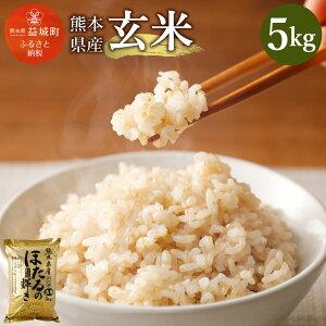 【ふるさと納税】熊本県産 玄米 5kg ヒノヒカリ ほたるの輝き お米 2020年度 令和2年度産 米 益城町 九州産 国産 送料無料