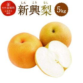 【ふるさと納税】新興梨 5kg しんこう なし 果物 くだもの フルーツ 果実 九州産 国産 熊本県産 送料無料 冷蔵