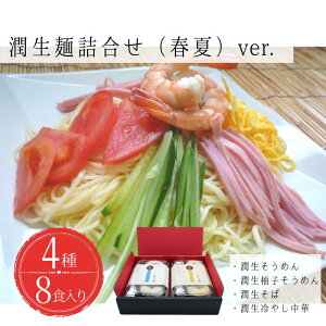 【ふるさと納税】潤生麺詰合せ(春夏)8食入り