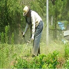 【ふるさと納税】空き家、空き地の草刈サービス(年2回)