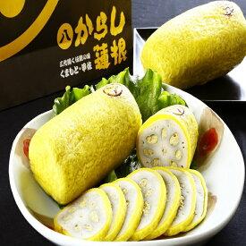 【ふるさと納税】【3代続く伝統の味】ピリッとうまか!熊本からし蓮根(3本〜4本)