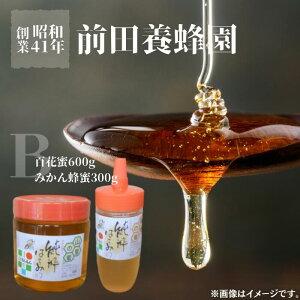 【ふるさと納税】前田養蜂園 蜂蜜Bセット