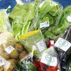 【ふるさと納税】山都でしか野菜セット 【野菜・セット・詰合せ・フルーツ・お米・季節野菜・詰め合わせ】