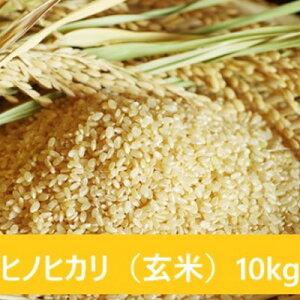【ふるさと納税】山間地 湧水米 ヒノヒカリ(玄米)10kg 【お米】