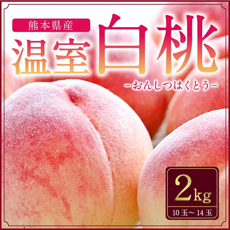 【ふるさと納税】熊本県産温室白桃2キロ
