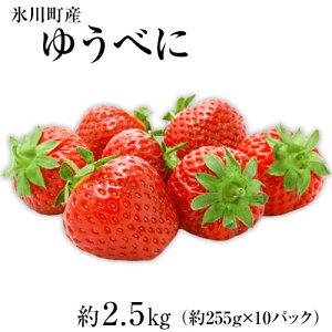 【ふるさと納税】ゆうべに 約2.5kg(約255g×10パック)DX、3Lサイズ 熊本県氷川町産 ゆうべに いちごJAやつしろ和鹿島いちご部会《1月上旬-3月上旬頃より順次出荷》