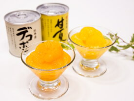 【ふるさと納税】芦北柑橘(10缶入)