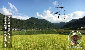 【ふるさと納税】米手(こめて)ヒノヒカリ玄米10kg【農薬不使用・無化学肥料米】新米 熊本県産