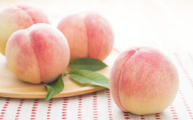 【ふるさと納税】錦の水蜜桃2kg(6玉〜8玉) 【果物・もも・桃・フルーツ】 お届け:2019年6月上旬〜8月下旬