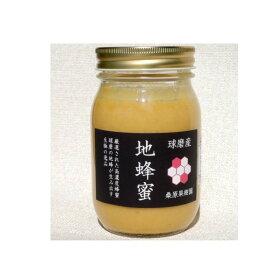 【ふるさと納税】希少 くま(球磨)産の地蜂蜜(無添加・非加熱 )500g×1本 【蜂蜜・加工食品】