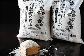 【ふるさと納税】熊本県湯前町産 にこまる 4kg×2袋 精米 令和3年度産 送料無料 米 2021年11月〜順次出荷予定 EZ003
