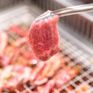 【ふるさと納税】【定期便】【6回】くまもと あか牛 焼肉 450g 赤牛 お肉 牛肉 ギフト 贈り物 国産 九州産 BBQ バーベキュー 冷凍 送料無料 半年 6ヶ月 合計2700g
