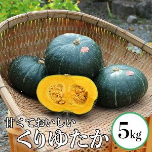 【ふるさと納税】熊本県 球磨村産 かぼちゃ くりゆたか 5kg