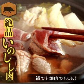 【ふるさと納税】熊本県 球磨村 ジビエ 猪肉 ブロック 1kg