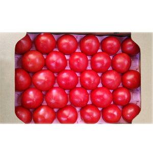 【ふるさと納税】杉田農園の完熟「王様トマト」4kg(約20個〜28個入り)   お届け時期:入金確認後20日前後