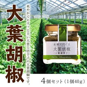 【ふるさと納税】No.700大葉胡椒4個セット/しそシソ万能調味料スパイス大分市