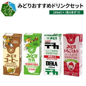 【ふるさと納税】みどりおすすめドリンクセット 200ml×24本 限定デザイン 飲み比べ 紙パック みどり牛乳 コーヒー いちごミルク デカ 乳脂肪4.5% 生乳100% ミルクコーヒー カフェオレ 珈琲