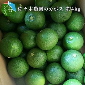 【ふるさと納税】佐々木農園のカボス 約4kg かぼす 柑橘 大量 大容量 カボス果汁 C09008【大分県大分市】