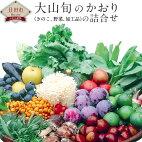 【ふるさと納税】大山旬のかおり(きのこ、野菜、加工品)の詰合せ野菜山の幸新鮮詰め合わせ送料無料