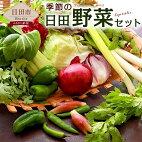 【ふるさと納税】季節の日田野菜セット1箱大分産詰め合わせ送料無料