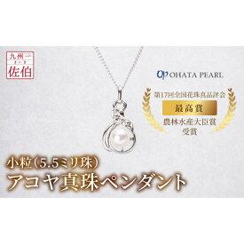 【ふるさと納税】小粒(5.5ミリ珠)アコヤ真珠ペンダント