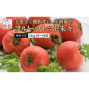 【ふるさと納税】フルーツトマト朱々(Мサイズ) 1kg 16〜18玉