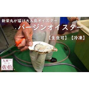 【ふるさと納税】新栄丸がお届け 大入島オイスター(バージンオイスター)【生食可】【冷凍】